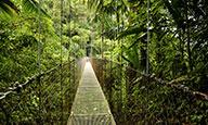 Paradis sauvages - extension à Tambor