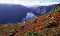 Splendeurs des fjords - voyage  - sejour